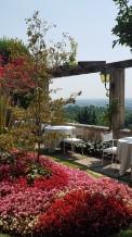 The garden at the Hotel Villa Cipriani.